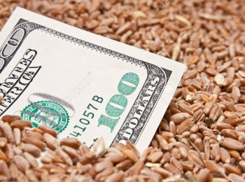 A Solution for Wheat Shortage & Budget Deficit