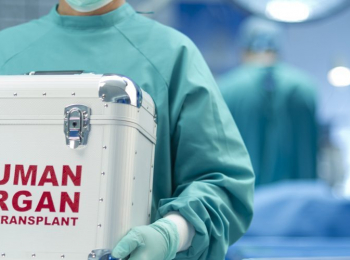 Using Immune System Modification to Minimize Organ Transplant Rejection