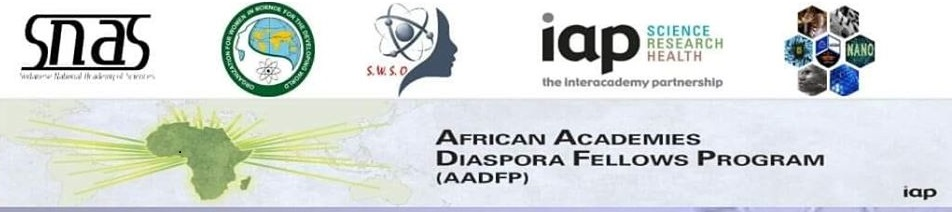 African Academics Diaspora Fellows Program (AADFP)
