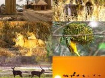A Strategy to Modernize Al-Dindir National Park