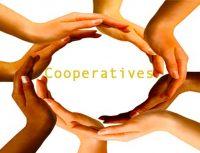 Cooperative Associations