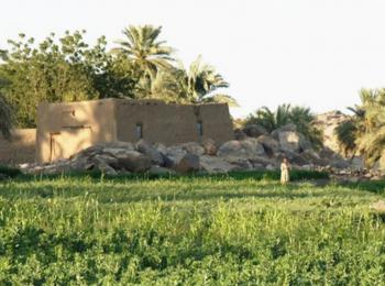 Gadarif Farmers' Forum
