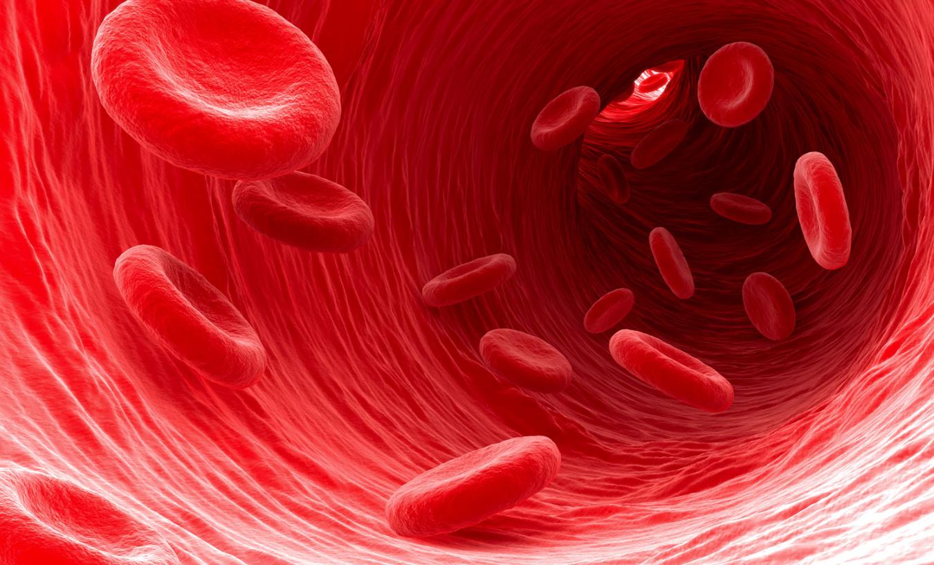 Blood Flow Device