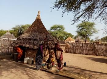 Darfur Women Entrepreneurs for Production of Organic Food